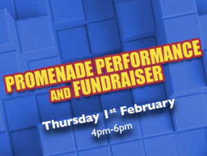 Promenade Performance and Fundraiser